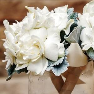 MORS Wedding Gardenia