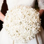 MORS Wedding Stephanotis